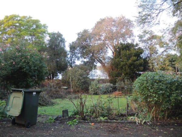 A big daunting challenge of a garden