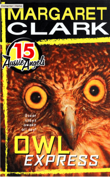 AA 15 Owl Express by Margaret Clark